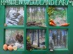 Hansen Woodland Farm: Ponderosa Habitat